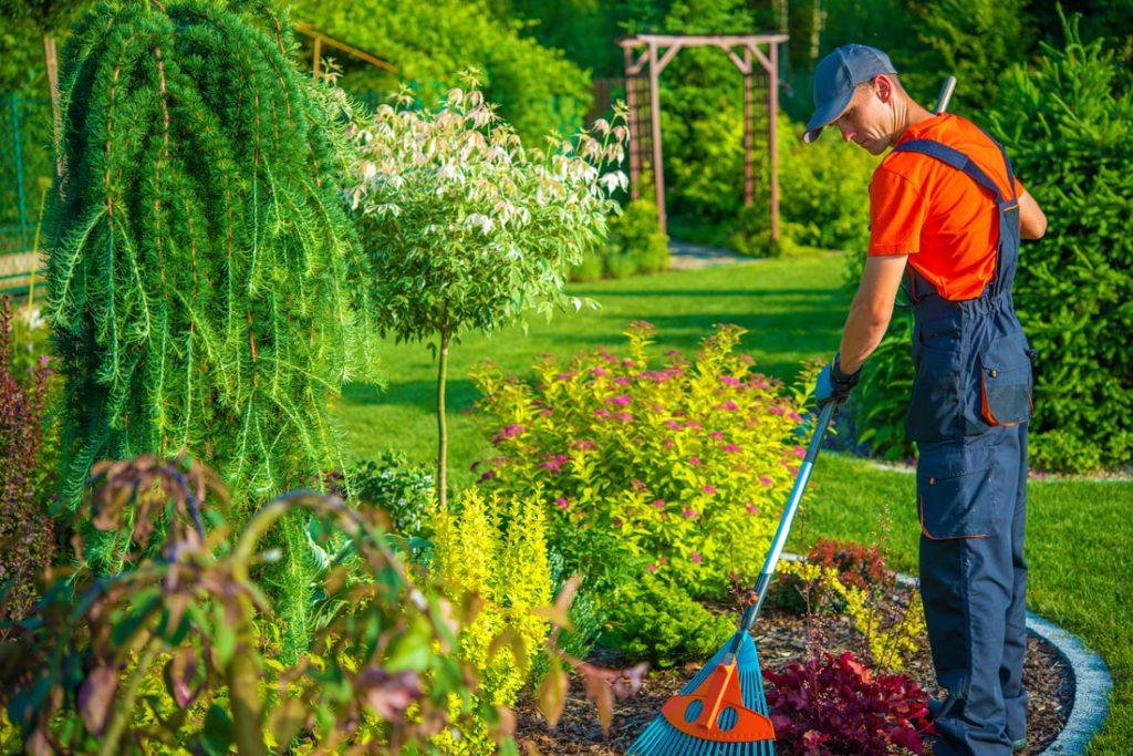 شركة تنظيف حدائق الشارقة